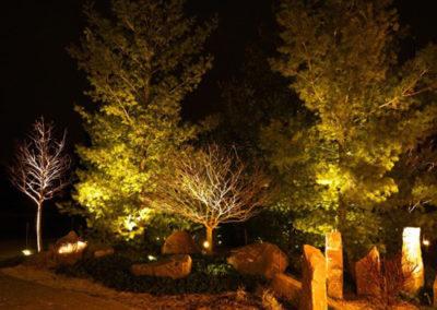 landscape-lighting-1